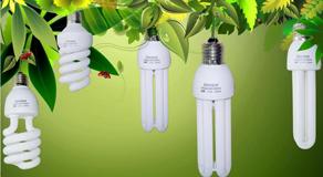 节能灯网站解决方案
